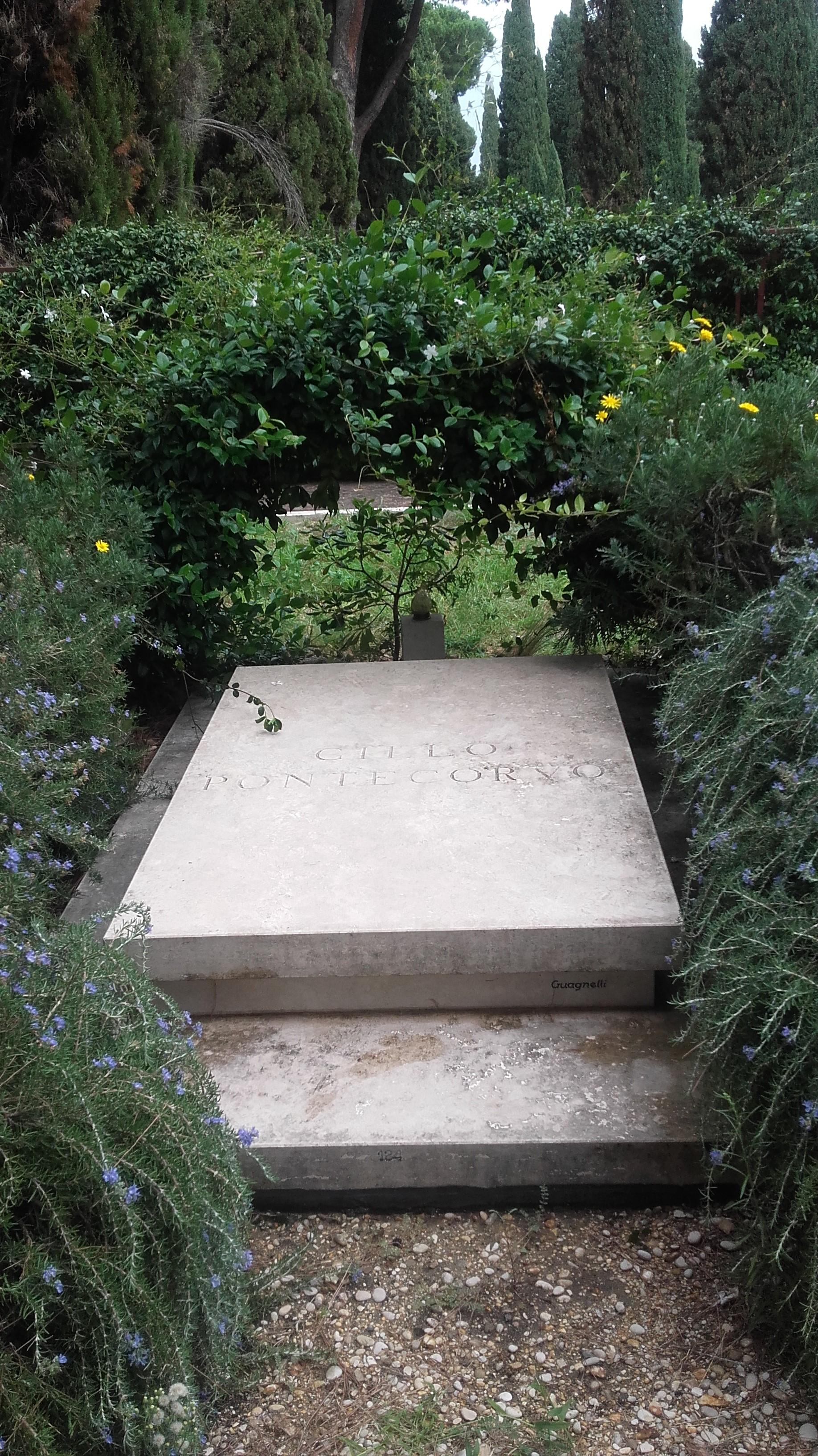Posizione Zona Ampliamento: riquadro 132, tomba 124